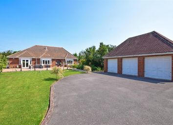 Thumbnail 4 bed bungalow for sale in Eastergate Lane, Walberton, Arundel, West Sussex