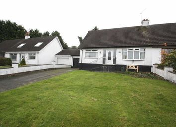 Thumbnail 3 bed semi-detached bungalow for sale in Beechgrove, Ballynahinch, Down