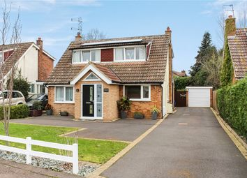Thumbnail 4 bed detached house for sale in Rosebery Avenue, Poringland, Norwich, Norfolk