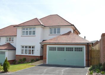 Thumbnail 4 bed detached house for sale in Primrose Drive, Newton Abbot, Devon