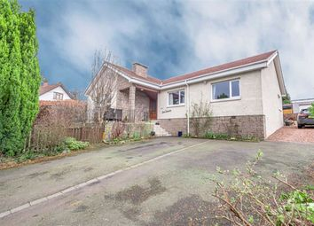 Thumbnail 4 bed detached bungalow for sale in Falkirk Road, Larbert, Stirlingshire