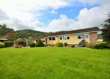 Thumbnail 4 bed detached bungalow for sale in Yew Tree Lane, Compton Martin, Bristol