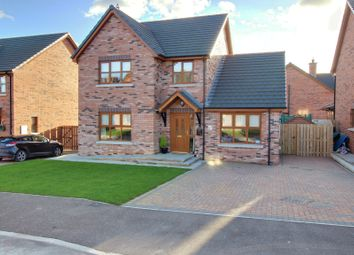 Thumbnail 4 bed detached house for sale in St Andrews Drive, Ballyhalbert