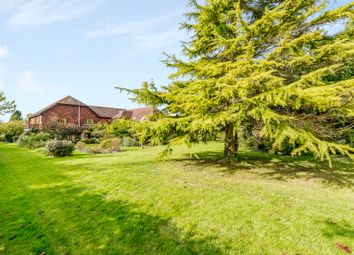Thumbnail 6 bed detached house for sale in Underhill Lane, Ditchling, Hassocks