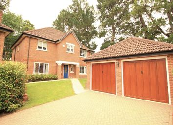 Thumbnail 4 bed detached house to rent in Clairmore Gardens, Tilehurst, Reading
