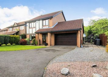 Thumbnail 4 bed detached house for sale in Castlemaine Close, Houghton Le Spring