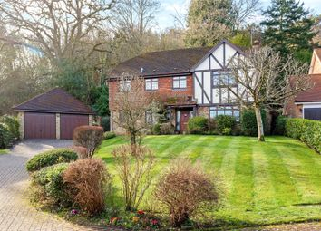 Thumbnail 4 bed detached house for sale in Woodrough Copse, Bramley
