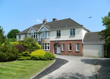 Thumbnail 4 bed property to rent in Worthing Road, Horsham