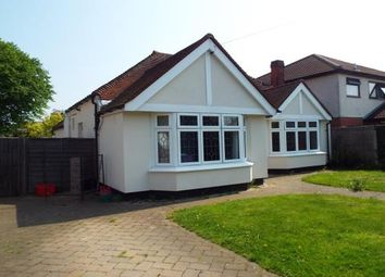 Thumbnail 4 bed detached bungalow to rent in Warescot Road, Brentwood