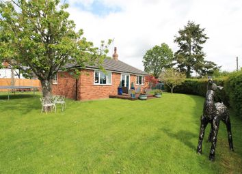 Thumbnail 3 bed detached bungalow for sale in Dilwyn, Hereford