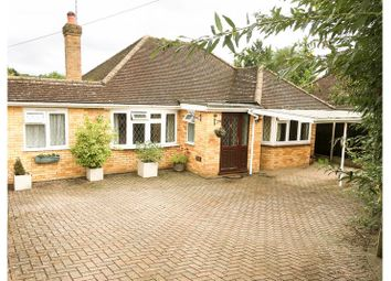Thumbnail 3 bed bungalow to rent in Hazley Close, Hartley Witney, Hartley Witney