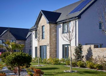 """Thumbnail 4 bedroom detached house for sale in """"Guimard"""" at Ocein Drive, East Kilbride, Glasgow"""