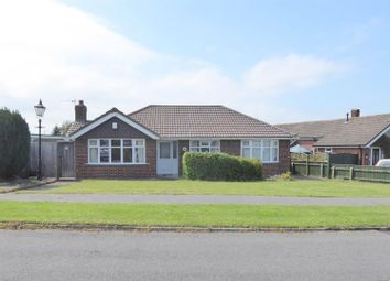 3 bed detached bungalow to rent in Grainsby Avenue, Holton-Le-Clay, Grimsby DN36