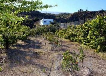Thumbnail 3 bed detached house for sale in Fasnia, Tenerife, Canary Islands, Spain