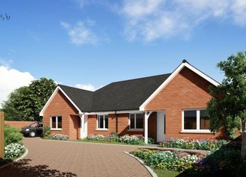 Thumbnail 2 bed semi-detached bungalow for sale in Stratton Road, Shirley, Southampton