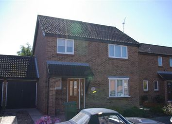 Thumbnail 4 bed detached house to rent in Coopers Avenue, Heybridge, Maldon
