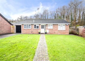 Thumbnail 3 bedroom bungalow for sale in Beechmore Drive, Chatham, Kent