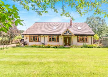 Thumbnail 4 bedroom detached house to rent in Holmewood, Holme, Peterborough