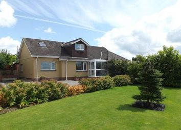 Thumbnail 5 bed bungalow for sale in Milton Abbot, Tavistock, Devon