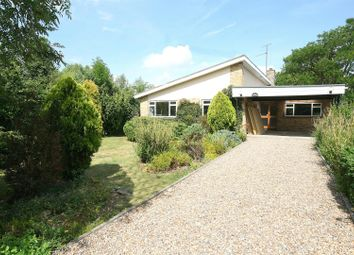 Thumbnail 4 bed detached bungalow for sale in Fairfield, Long Marston, Herts