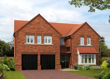 "Thumbnail 5 bedroom detached house for sale in ""The Dunstanburgh"" at Lovesey Avenue, Hucknall, Nottingham"