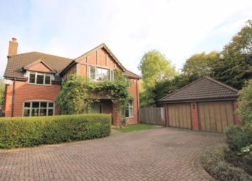 Thumbnail 5 bed detached house for sale in Mead Lane, Storrington, Pulborough