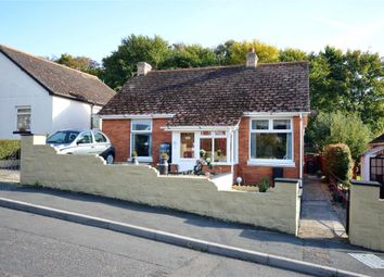 Thumbnail 4 bedroom detached bungalow for sale in Pennyacre Road, Teignmouth, Devon
