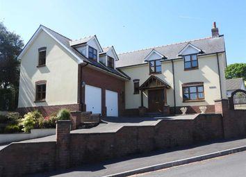 Thumbnail 4 bed detached house for sale in Trem-Y-Ddol, Newcastle Emlyn, Carmarthenshire