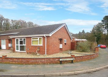 Thumbnail 2 bed terraced bungalow for sale in Laburnum Avenue, Mildenhall, Bury St. Edmunds