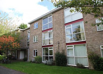 Thumbnail 2 bedroom flat to rent in Lilac Court, Cambridge