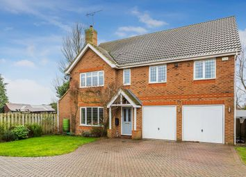 Thumbnail 5 bed detached house to rent in Danesfield, Ripley, Woking