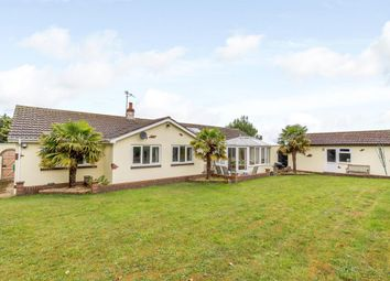 Thumbnail 4 bed bungalow for sale in Scarborough Road, East Heslerton