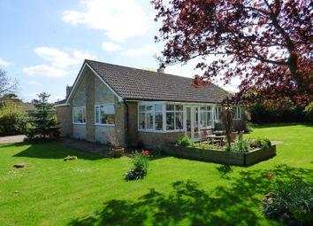 Thumbnail 4 bed detached bungalow for sale in Mill Road, Tibenham, Norwich