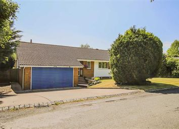 Thumbnail 4 bed detached bungalow for sale in Merefield, Astley Village, Chorley