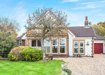 Thumbnail 5 bed bungalow to rent in The Shore, Hambleton, Poulton-Le-Fylde