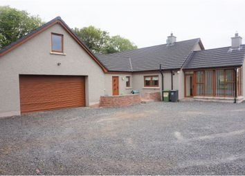 Thumbnail 4 bed detached bungalow for sale in Tullynewbank Road, Glenavy, Crumlin