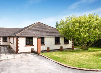 Thumbnail 4 bed bungalow for sale in Tetney Lane, Holton-Le-Clay