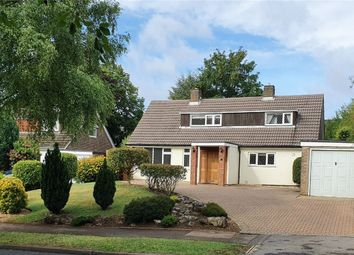 Thumbnail 4 bed detached house for sale in The Ryde, Hatfield, Hertfordshire