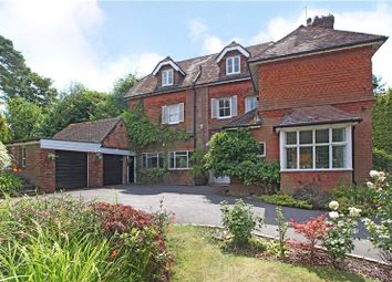 Thumbnail 5 bed semi-detached house for sale in Grayswood Road, Haslemere, Surrey