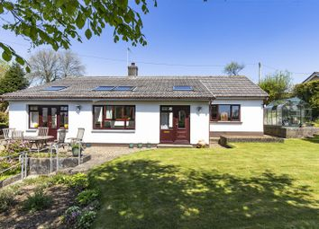Thumbnail 3 bed bungalow for sale in Morval, Looe