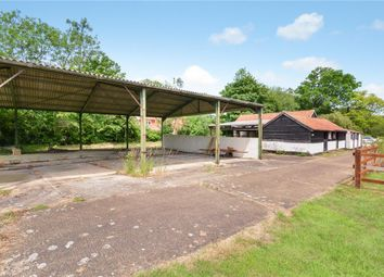 Thumbnail 4 bedroom barn conversion for sale in Hoxne Road, Denham, Eye
