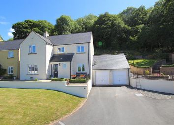 Thumbnail 4 bed detached house for sale in Eluneds Drive, Brecon