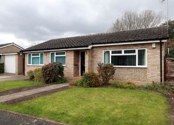 Thumbnail 3 bed detached bungalow to rent in The Lammas, Mundford