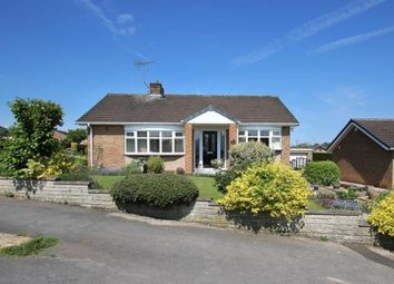 Thumbnail 1 bed bungalow for sale in Grange Avenue, Woodsetts, Worksop, South Yorkshire
