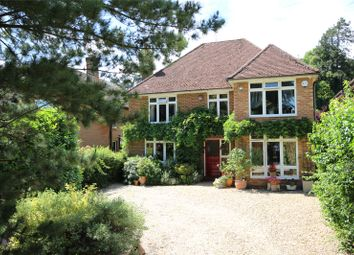 Thumbnail 4 bed detached house for sale in Winchester Road, Alton, Hampshire