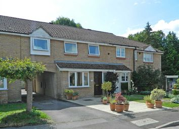 Thumbnail 4 bed property for sale in Oakwood Close, Midhurst