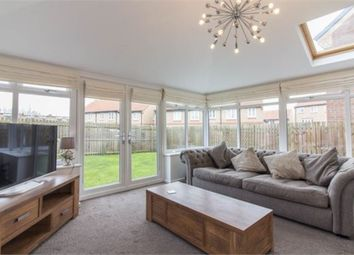 Thumbnail 4 bed detached house for sale in Maple Avenue, Colburn, Catterick Garrison