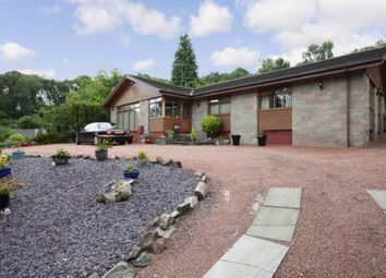 Thumbnail 4 bed bungalow for sale in Upper Carman Road, Renton, Dumbarton, West Dunbartonshire