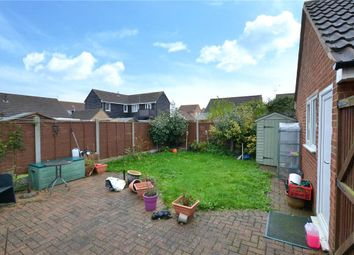 2 bed semi-detached house for sale in Hyacinth Close, Clacton-On-Sea CO16