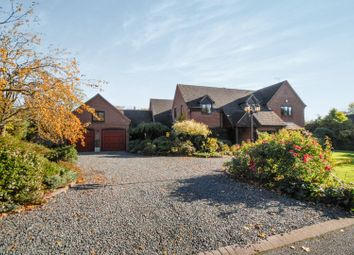 Thumbnail 4 bed detached house for sale in Cliftonthorpe Meadows, Ashby-De-La-Zouch